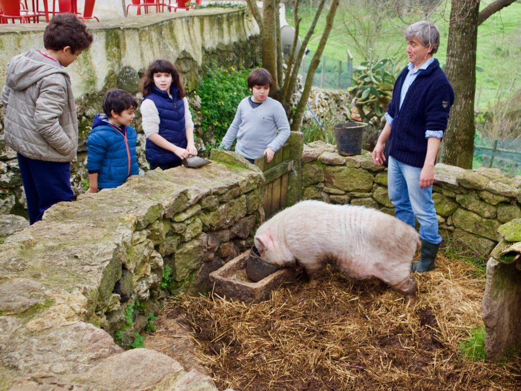 Aldeia Mata Pequena Animal feeding with children